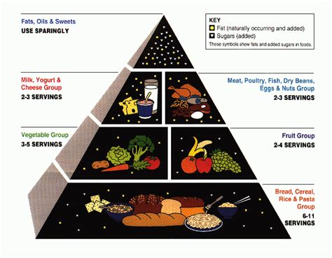 how to use the food group pyramid for better eating lifehacker australia