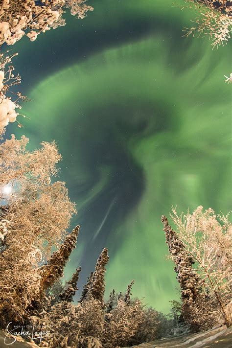 northern lights virginia 2017 northern lights invade the usa as unexpected phenomenon
