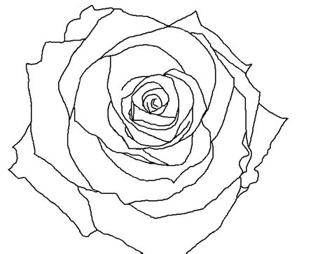 rose pattern line drawing rose lineart by raeshy on deviantart