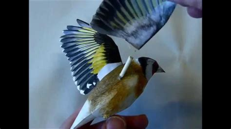 Paper Craft Birds - incredibly realistic 3d papercraft bird