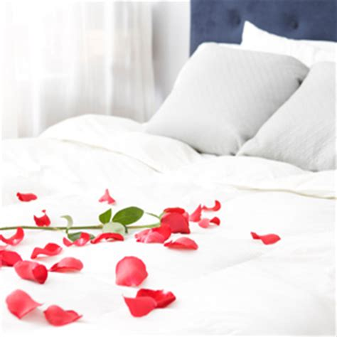 rose petals on bed homefurnishings com romancing the room