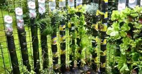 soda bottle tower for plants hometalk