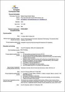 sample curriculum vitae engineering student example good resume