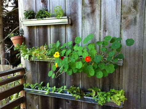 Gutter Planters On Fence by 37 Creative Diy Garden Ideas Ultimate Home Ideas