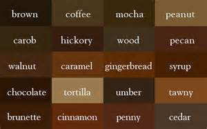 colors that compliment brown the color thesaurus brown brown coffee and designers