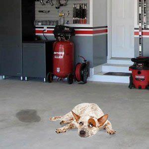 Cleaning   Garage Tool Advisor
