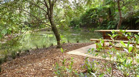 tamborine mountain botanic gardens take time to tamborine mountain botanic gardens
