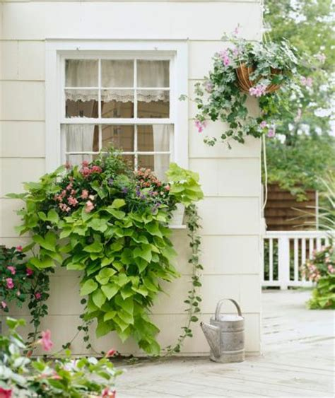 Beautiful Planters by 30 Bright And Beautiful Window Box Planters Midwest Living