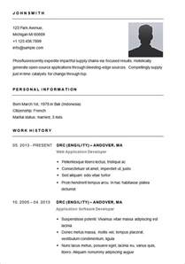 Standard Resume Sle 28 Best 25 Cv Format Sle Basic Resume Sle Simple Layout