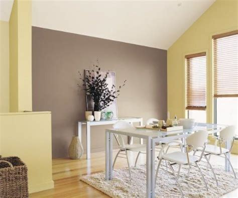 brown feature wall with walls paintright colac