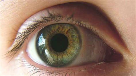 imagenes de ojos zarcos los hombres y las mujeres vemos distinto d 237 a a d 237 a