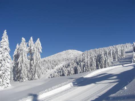 appartamenti madonna di ciglio capodanno 2014 offerte settimana last minute ski vacanze natale