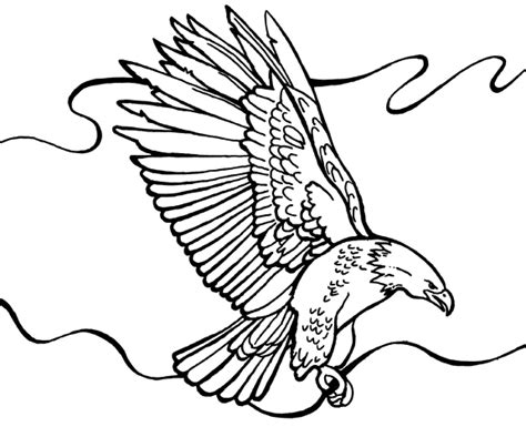 Free Coloring Pages Of Bald Eagle Drawing Bald Eagle Coloring Pages