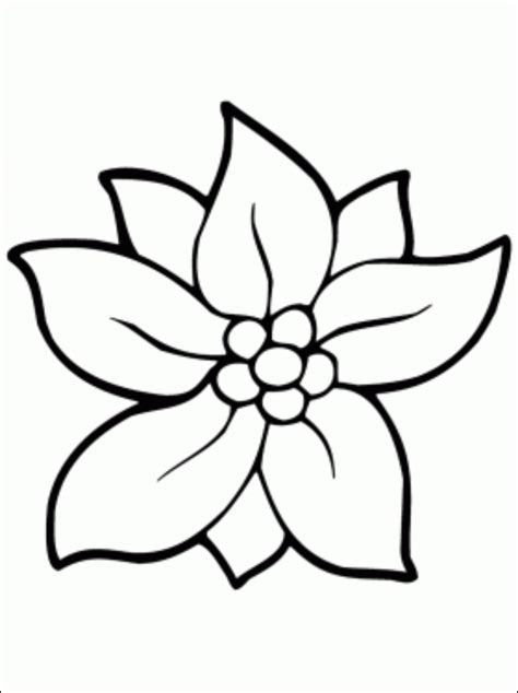 christmas flower coloring page coloring pages arts and