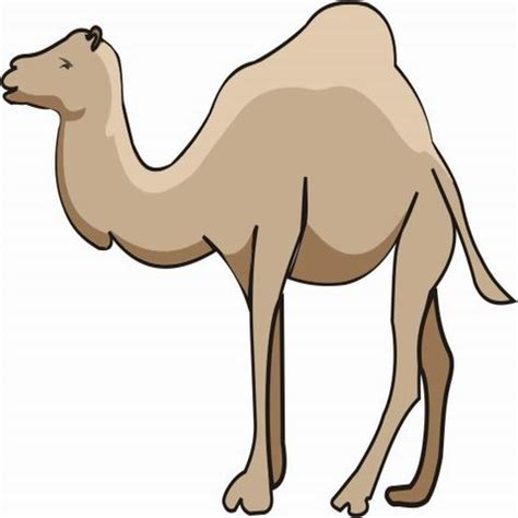 Camel Coloring Pages for Kids to Color and Print