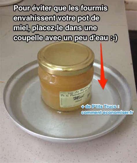 comment se d饕arrasser des fourmis dans une cuisine l astuce toute simple pour prot 233 ger vos aliments des fourmis