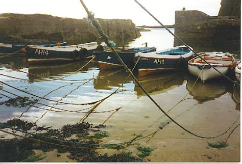 find a fishing boat uk and ireland fishing boats in auchmithie harbour 169 colin smith