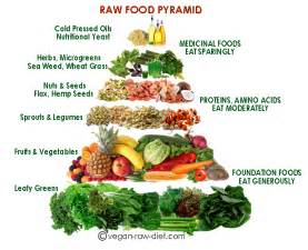 best raw food pyramid raw food pyramid poster