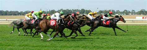 try a new race day do with a double french braid women horse racing saturday local horse racing focuses on
