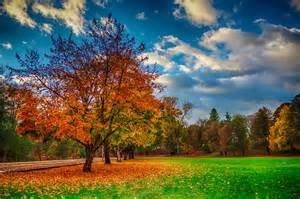 In Fall oregon fall foliage weekly update 11 2 2013 oregon fall foliage