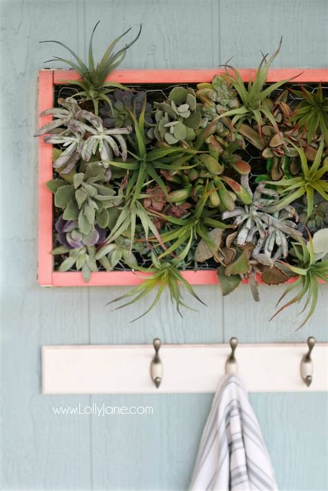 diy vertical succulent garden lolly