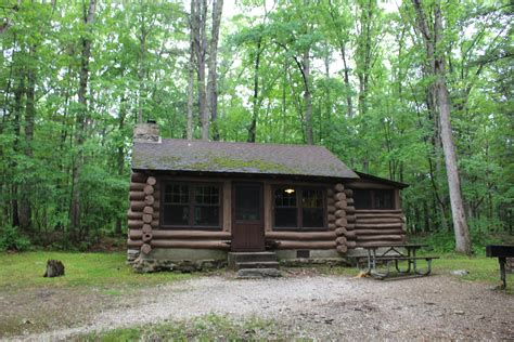 stokes state forest review from debt to dreams