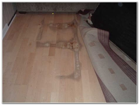 moisture barrier under laminate flooring flooring