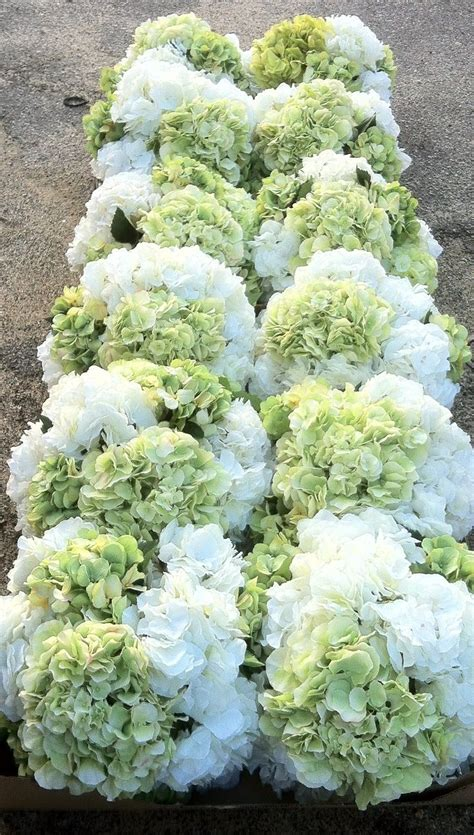 best 25 white hydrangea centerpieces ideas on