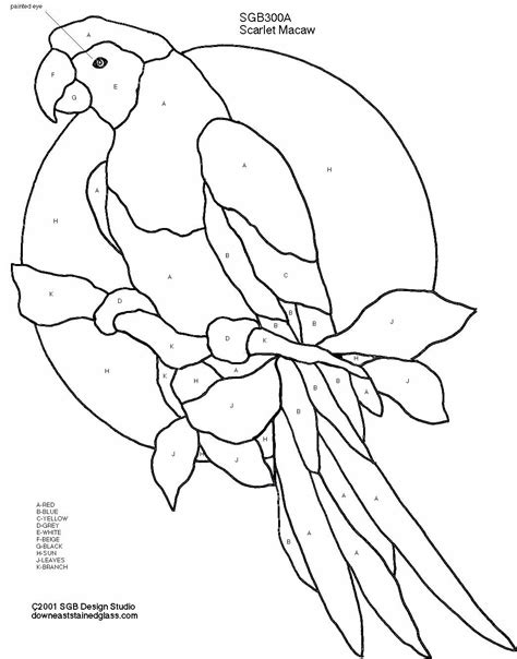free coloring pages of scarlet macaw