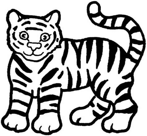 easy to draw clipart tiger drawing clipart best