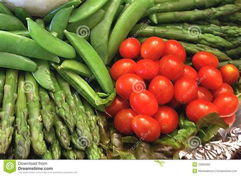 garden fresh vegetables fresh garden vegetables stock photo image 10393300