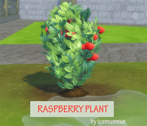 mod the sims 3 small potted plants mod the sims harvestable raspberry plant updated 9 nov