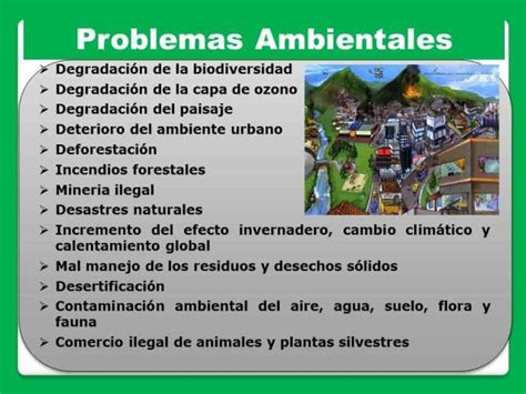 informacion de los problemas ambientales lista los problemas ambientales
