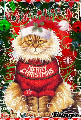purfect christmas meow picture  blingeecom