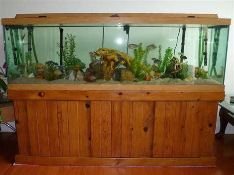 aquarium design glass thickness 100 gallon aquarium glass thickness aquarium design ideas