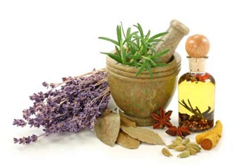 are herbal remedies the way to healing herbal