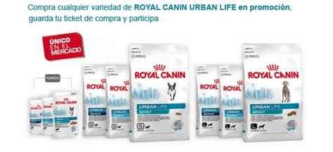 Promo Royal Canin 1 5 Kg X Small 8 3kg de pienso royal canin gratis