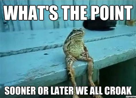 Sitting Frog Meme - what s the point weknowmemes