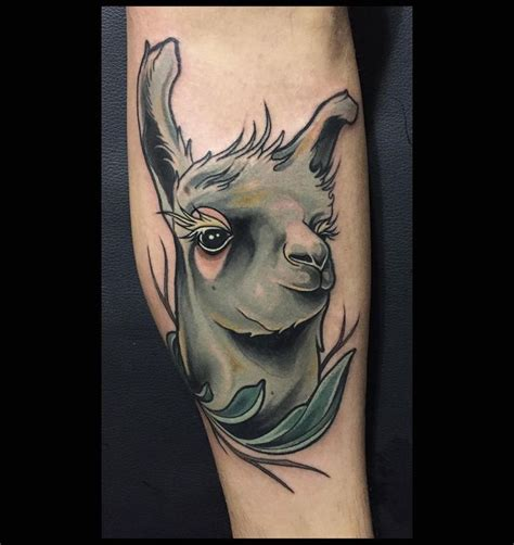 llama tattoo designs 17 best images about brian povak on animal