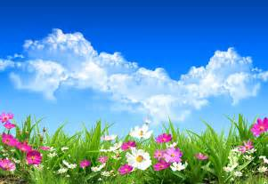 Spring flowers hd wallpaper free download wallpaper wallpapermine