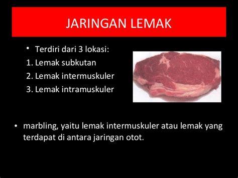 Maling Daging Mengandung Babi 170 Gram media ayu m komposisi daging 100514