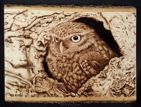 owl woodburning  brandojonesdeviantartcom
