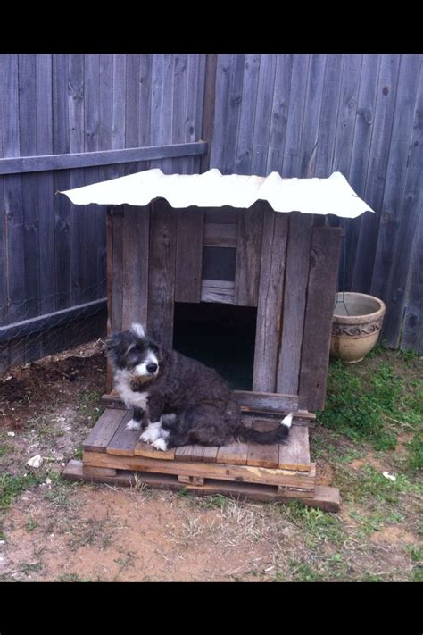 dog house with fence our diy dog house from up cycled fence boards and flooring scrap using a pallet as the