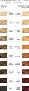 level 4 hair color how is level 4 hair color brown hairs
