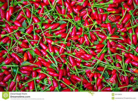 tiny small chili peppers texture background royalty free stock photo image 36143835