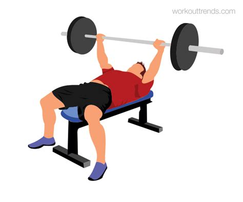 bench press exercise images how to do barbell bench press workout trends