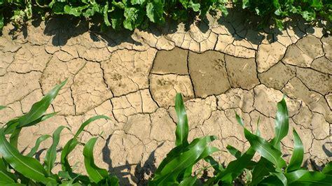 Landscape Degradation Definition Instruments To Implement The Objective Quot Land