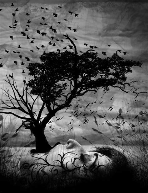 Ver Imagenes Surrealistas | las 25 mejores ideas sobre fotograf 237 a surrealista en