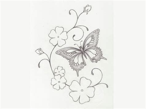 cherry blossom and butterfly tattoo designs cherry blossom pictures sketches drawings