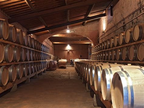 best wine in tuscany the best wines in tuscany
